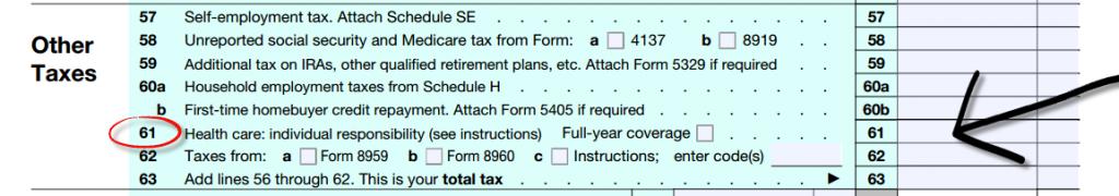 IRS 1040 Screen Shot